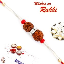 Charming Dual Rudraksh Rakhi with Silver String